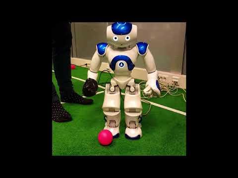 Kick Project Autonomous Systems practical -vertical edition
