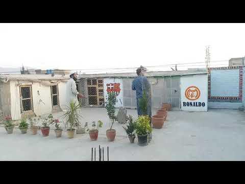 Quetta Pigeons Najeeb mengal video no 3