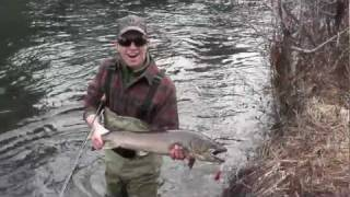 Metolius Fly Fishing: Big Bullies