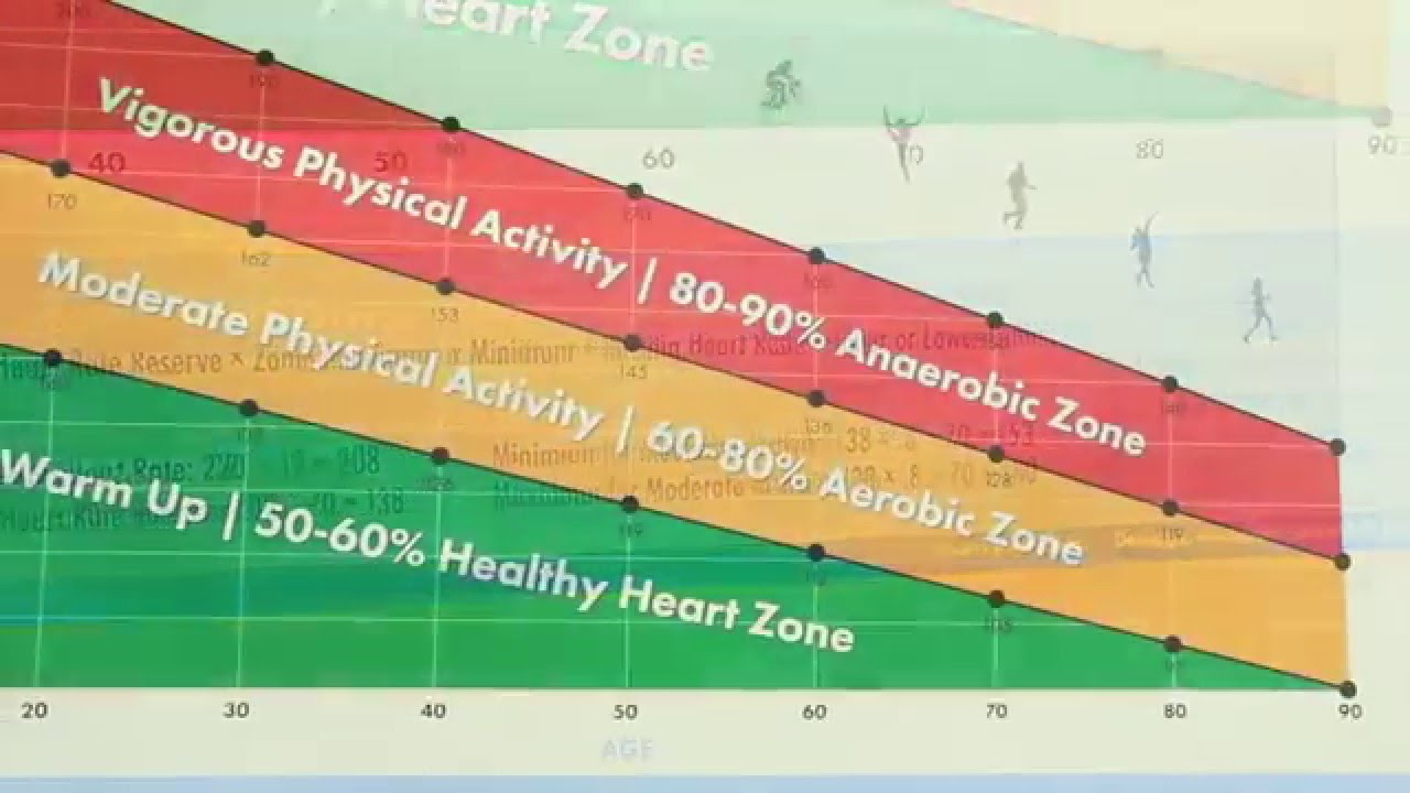Physical Activity Heart Rate Chart For Students Youtube