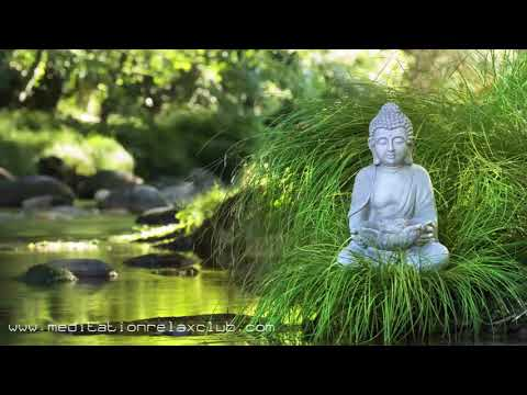 Deep Meditation Aid: Music For Buddhist Zazen, Mind Focus, Relax Therapy And Healing