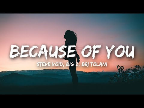 Steve Void & Big Z - Because Of You (Lyrics / Lyrics Video) ft. Bri Tolani