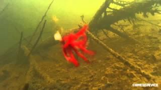 SJ 4000 Action Camera - Зимняя рыбалка(Всегда хотелось заглянуть в прорубь и увидеть, что там происходит. С помощью данной камеры это легко сделат..., 2014-03-22T06:42:37.000Z)
