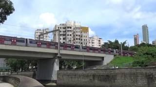 【香港の鉄道】MTR東鉄線 太和駅付近を走行するメトロキャメル電車