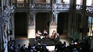 W.A.Mozart - Quintet kv.581 for basset clarinet and string quartet - 1.mov