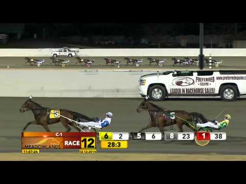 Meadowlands December 12, 2014 - Race 12 - Clementine Dream
