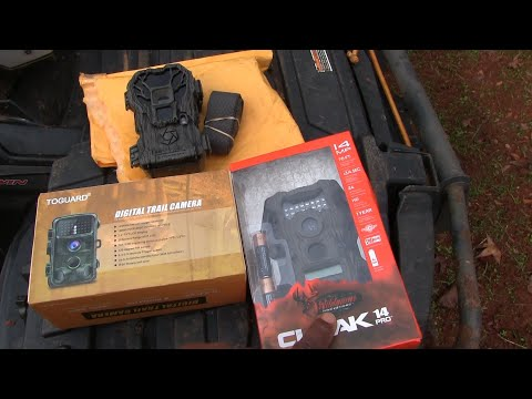 The Cheapest 14mp Trail Camera Comparison And Give Away