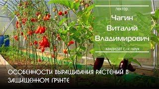 Особенности выращивания растений в защищенном грунте