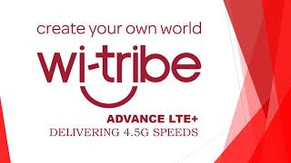 wi tribe lte device