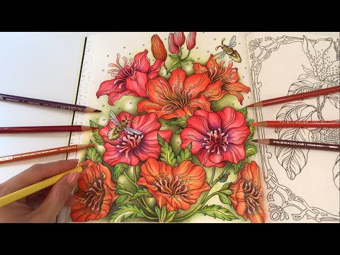 The Lilies | Tidevarv Coloring Book by Hanna Karlzon