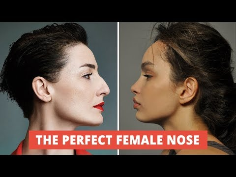 what-makes-a-beautiful-female-nose?-the-secret-of-a-perfect-female-nose