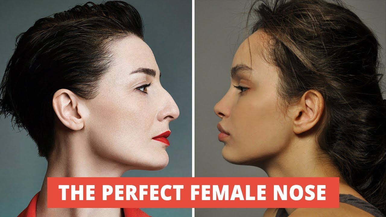 What Makes A Beautiful Female Nose The Secret Of A Perfect Female Nose Youtube
