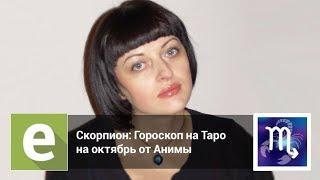 Скорпион - Гороскоп на Таро на октябрь 2018 года от эксперта LiveExpert.ru Анима