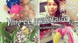 Vlog #2 - On va à Action, petit bobo, maternité & le nooooooord !!!