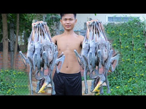 Yummy Cooking Wild Bird With Special Ingredient, Eating Delicious Food Factory