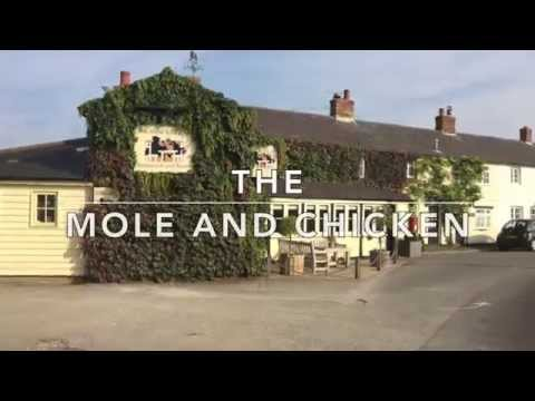 The Mole And Chicken Events