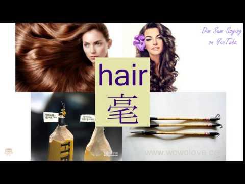 Hair In Cantonese Flashcard Youtube