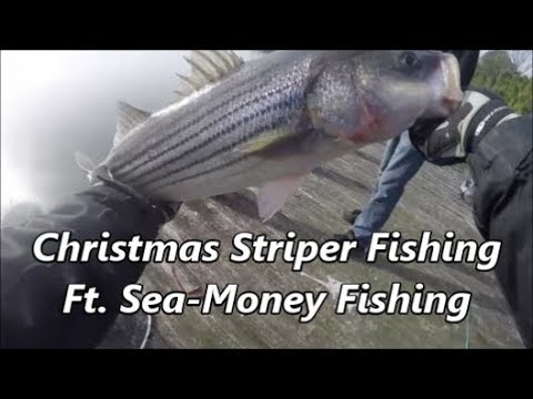 Christmas Striper fishing ft. Sea-Money Fishing