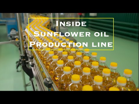 How is sunflower oil produced (made)? The process of making sunflower oil