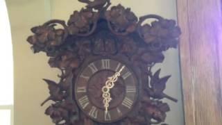 Rare Black Forest Cuckoo And Quail By Johann Baptist Beha M