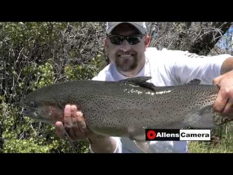 Eastern Utah Steelhead Fishing 2