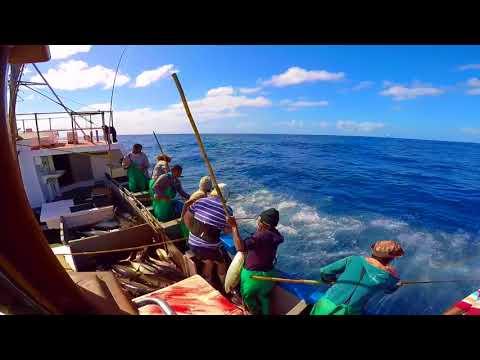 Tuna pole fishing Cape Town- West Ex