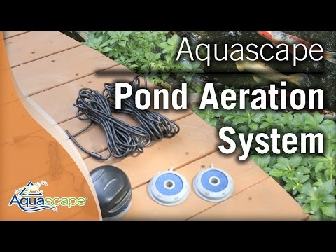 Aquascape S Pond Aeration Systems Youtube
