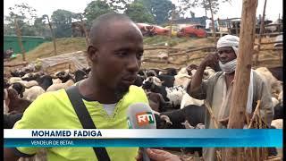 Tabaski 2017: Constat du coût du bétail après la décision du gouvernement