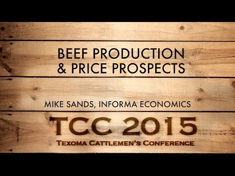 Beef Production and Price Prospects 2015 | Mike Sands, Informa Economics | TCC 2015