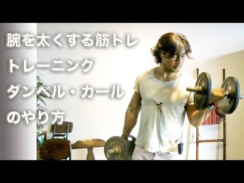 腕を太くする筋トレ。ダンベルカールのやり方。筋トレ初心者。