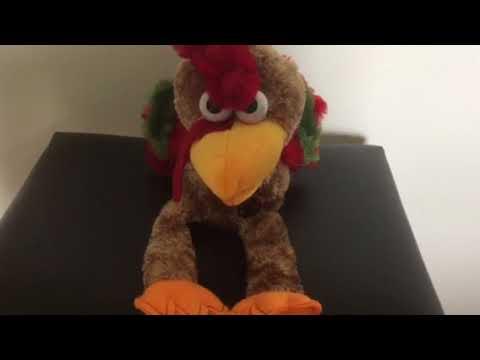 Dandee - Dancing Turkey - Hey Good Lookin