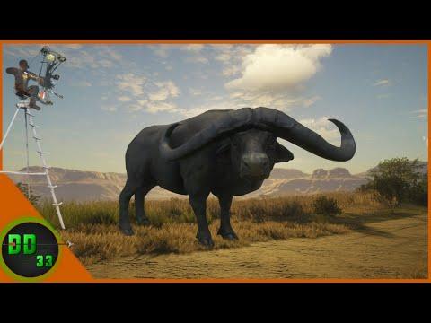 Diamond Cape Buffalo at Night! Call Of The Wild