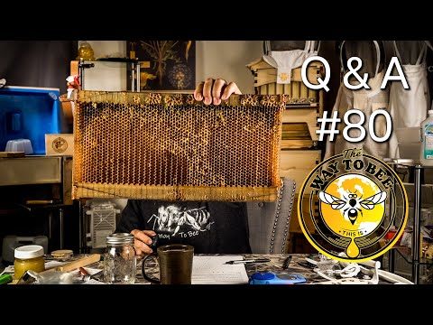 Backyard Beekeeping Q & A #80 How Long Do Flow Hive Frames Last? Bottom Boards, Insulated Cover.