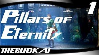 Pillars of Eternity :: Ep 1 :: Wizard Krumpkin