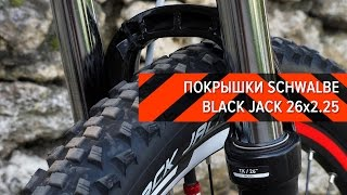Покрышки Schwalbe Black Jack 26x2.25 | Вело-Обзоры