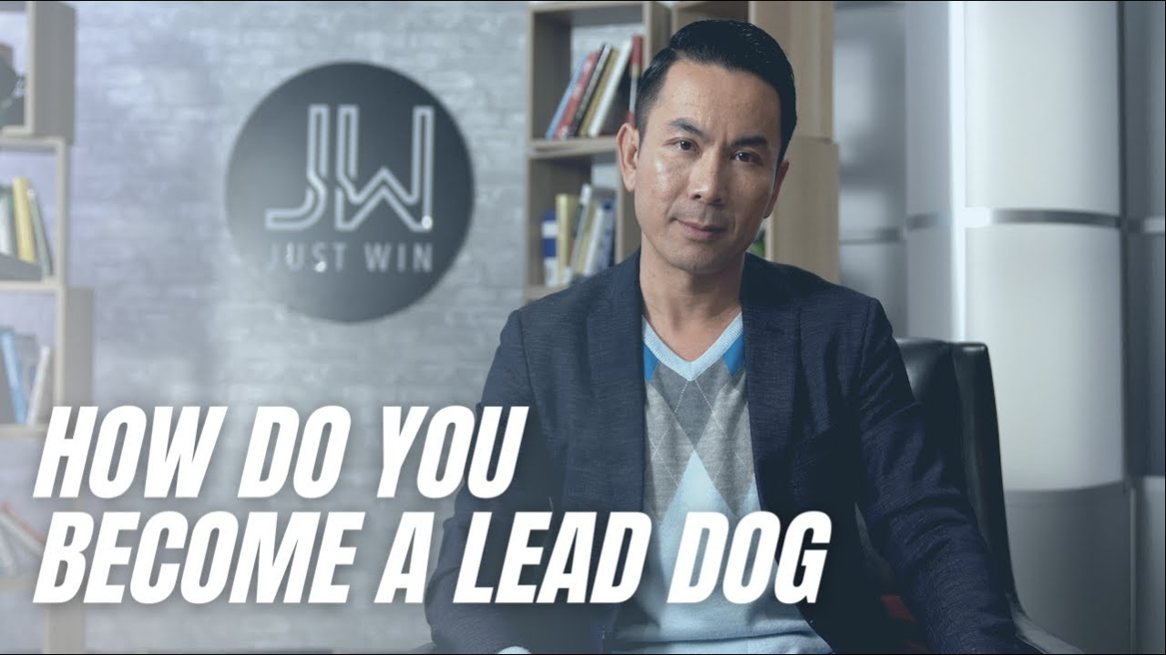 How Do You Become A Lead Dog