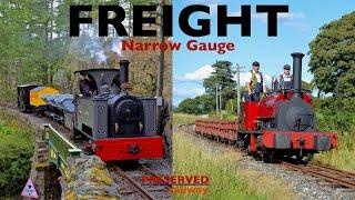 Preserved Railway Narrow Gauge Freight