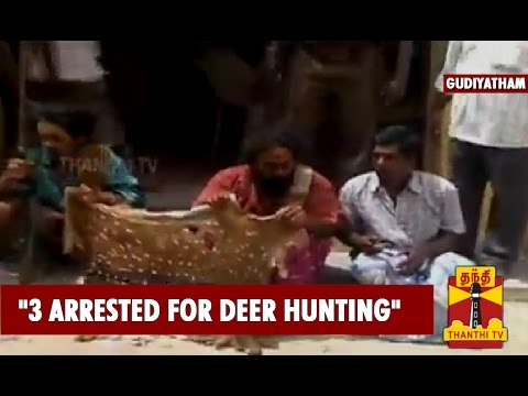 3 Arrested For Deer Hunting In Gudiyatham - Thanthi TV
