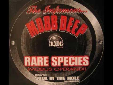 Mobb Deep - Rare Species