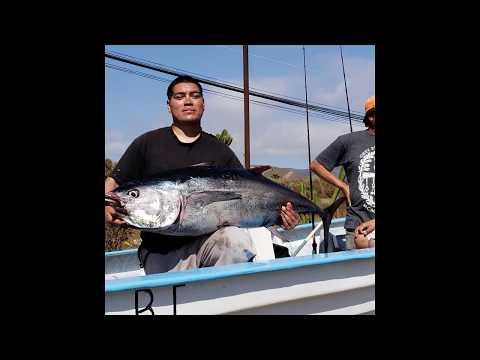 Fishing For Bluefin Tuna! Erendira B.C