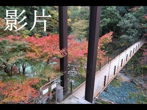 日本東京15天自由行( 第二節)奧多摩湖行山 ~漫遊奧多摩町冰川溪谷2017年11月11 25日 - YouTube