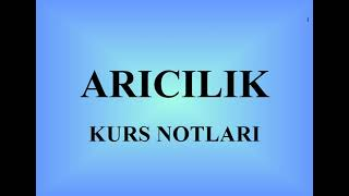 110- ARICILIK - kurs ders notları (beekeeping course lecture notes)