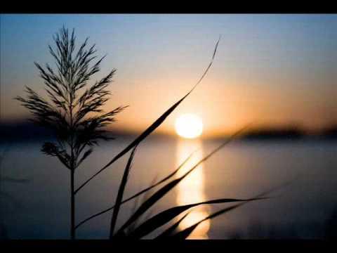 Why Goodbye By Christian Wunderlich