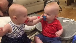 Twin Babies Steal Each Others Pacifiers