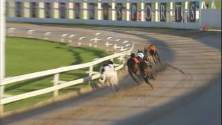 2017 STAR SPORTS DERBY - ROUND 3 - HEAT 3 - T3 DROOPYS BUICK