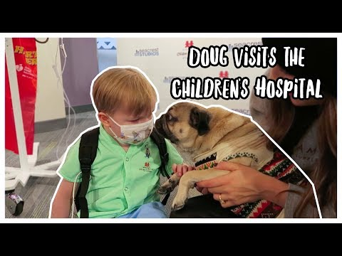Doug The Pug Visits the Children's Hospital