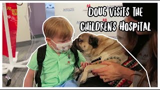 Doug The Pug Visits the Children's Hospital