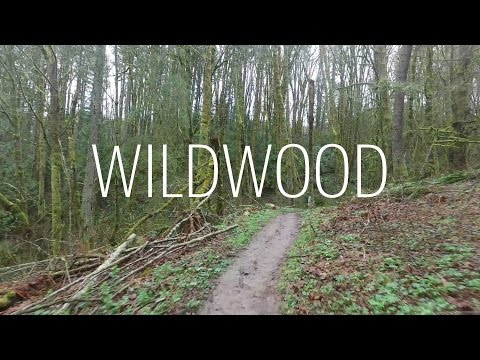 Running Wildwood Trail End to End in Forest Park Portland Oregon 30 miles - North to South - 2017