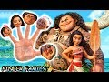 MOANA Finger Family Song DISNEY Daddy Finger Nursery Rhyme By ANIMALSKETCH W MAUI Amp BABY MOANA mp3