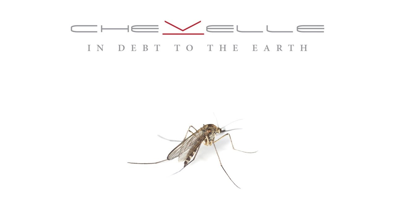 In Debt To Earth lyrics - Chevelle - Genius Lyrics